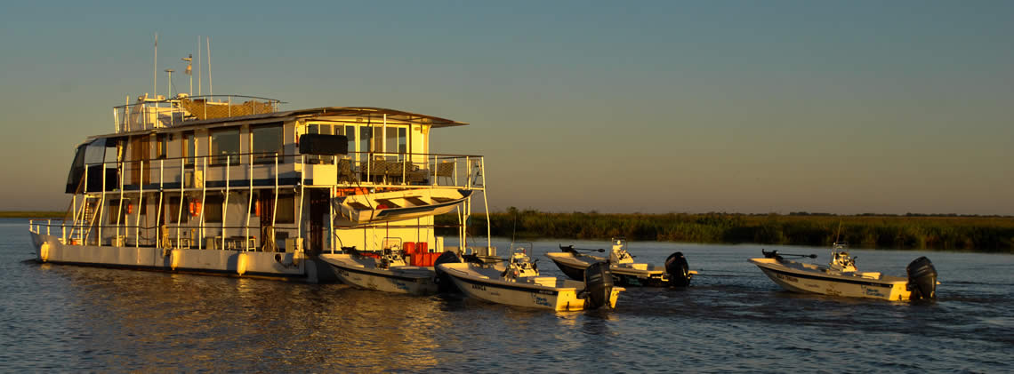 Golden Dorado River Cruiser images